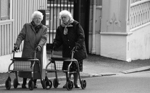 歩行車とシルバーカー