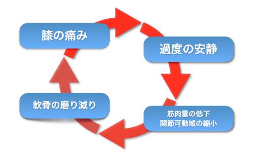 膝OA悪循環