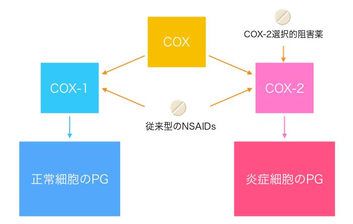 COX-2選択的阻害薬の作用機序